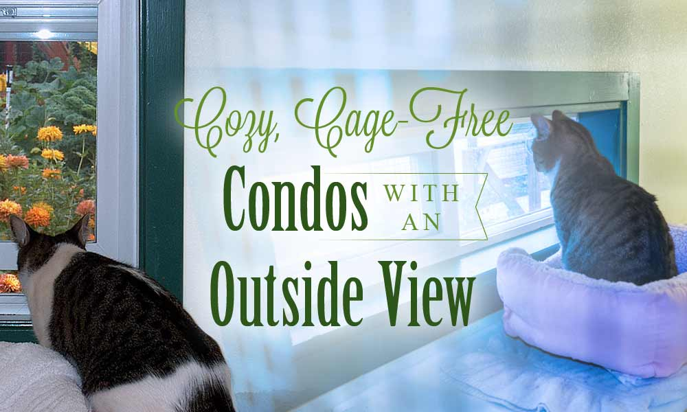 cage free condos with an outside view